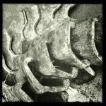 iron scales