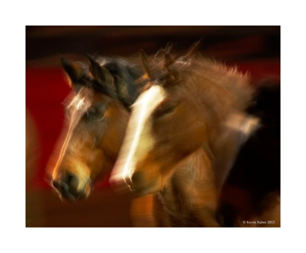 Horses In Motion, Part 2