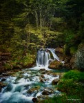 A Magical Waterfall In New Zea