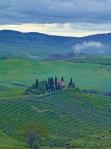 CF001773 Tuscany PIODAS 2013 T 2