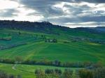 CF001818 Tuscany PIODAS 2013 T 2