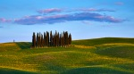 _DSF6321  Tuscany 2013 T 2 1