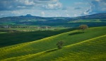 _DSF7607 Tuscany PIODAS 2013 T 2