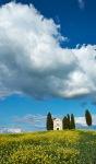 _DSF7673 Tuscany PIODAS 2013 T 2