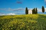 _DSF7700 Tuscany PIODAS 2013 T 2