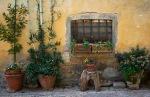 _DSF7966 Tuscany PIODAS 2013 T 2