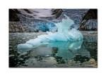 29 iceberg 2309