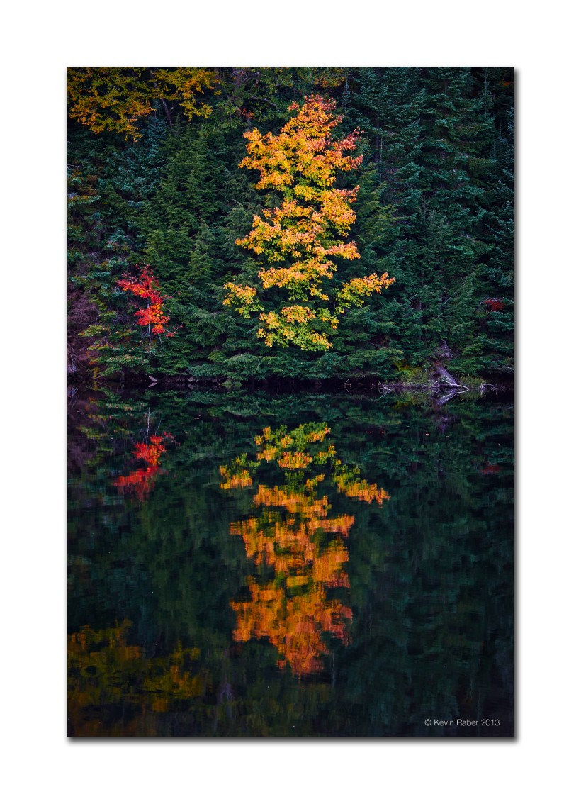 Fall Colors, Algonquin Park, Ontario, Canada