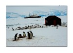 antarctica landscape 40