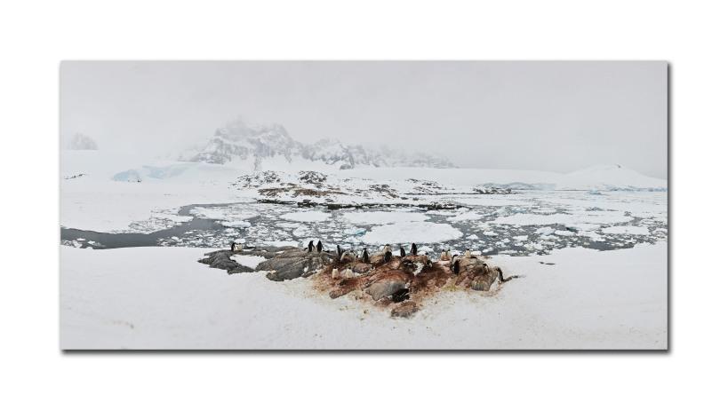 antarctica landscape 56