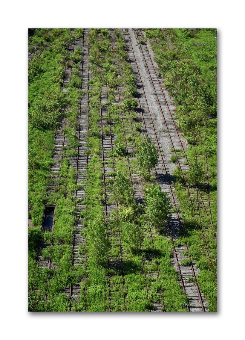 Old Rail Yard, Buffalo, NY