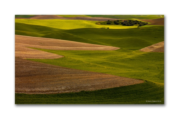 The Palouse Landscape, Simple and Beautiful