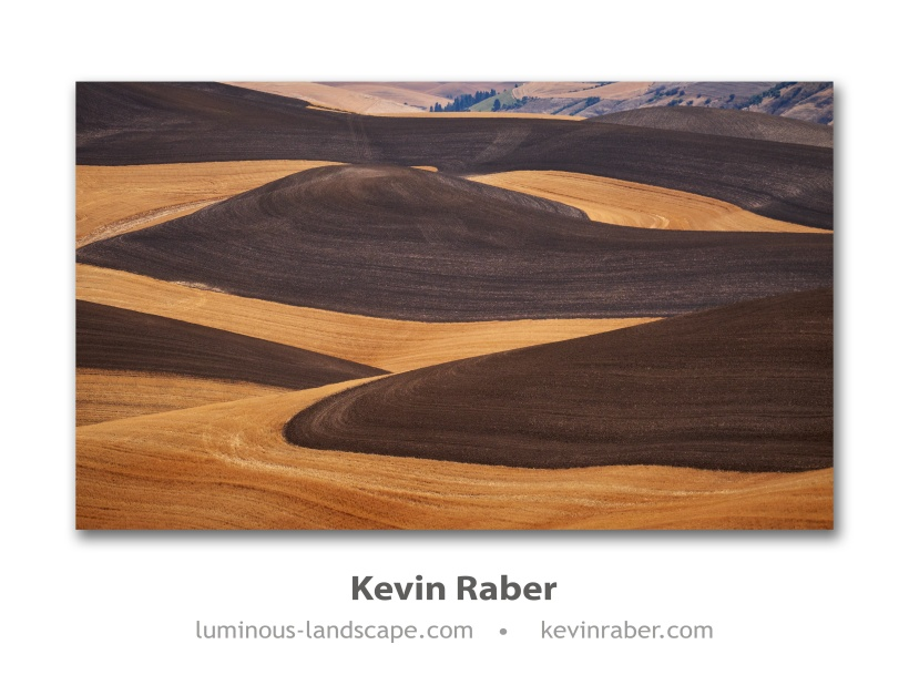 The Golds And Browns Of The Palouse