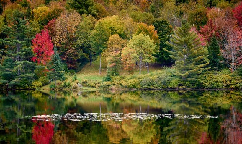 Classic Fall Color, New Hampshire